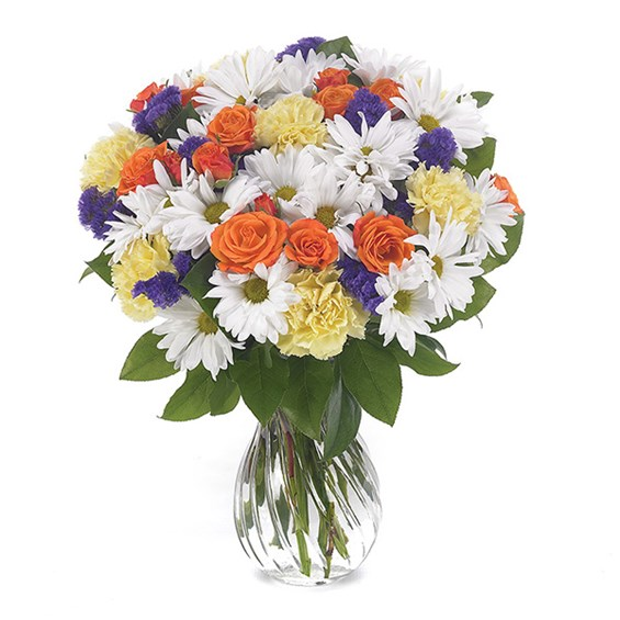 Daisy Delight flower bouquet (BF30-11K)